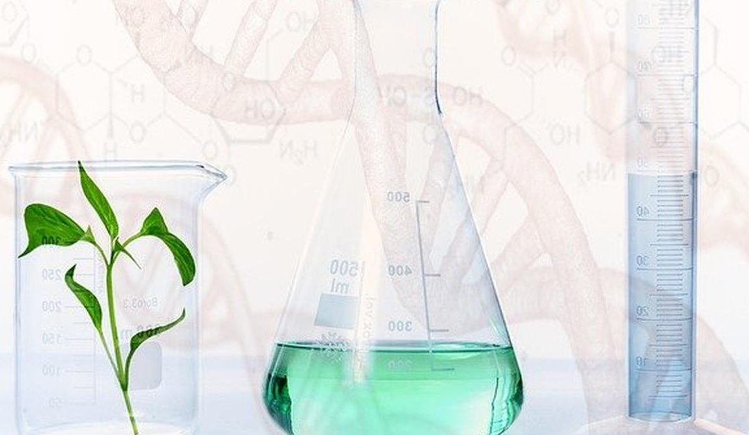 How Do I Organize My Laboratory Inventory?